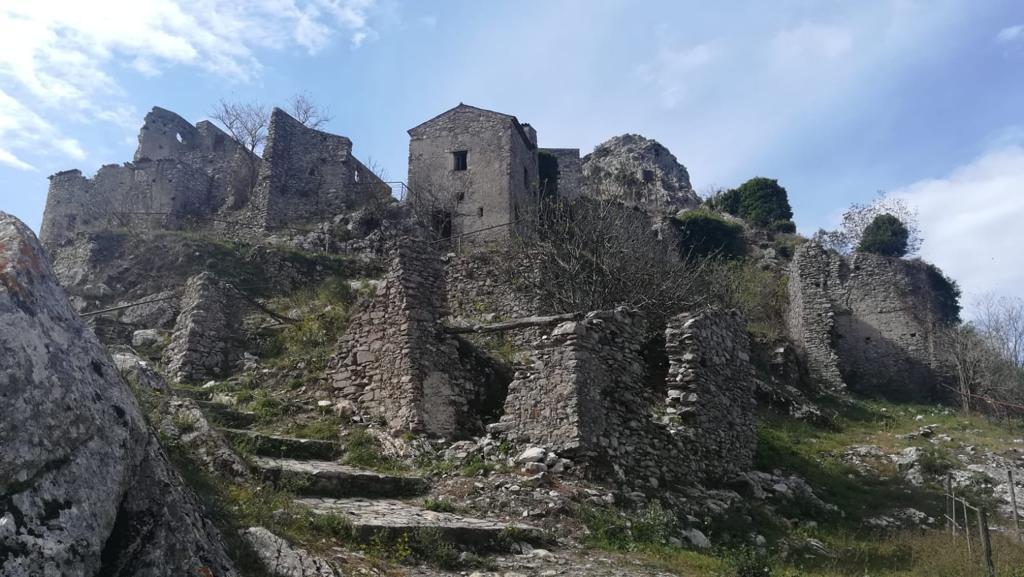 Region: <span>Cilento</span>